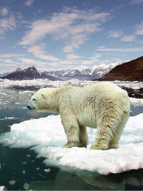 Secuelas del calentamiento global de un evento de hace 90 millones de años