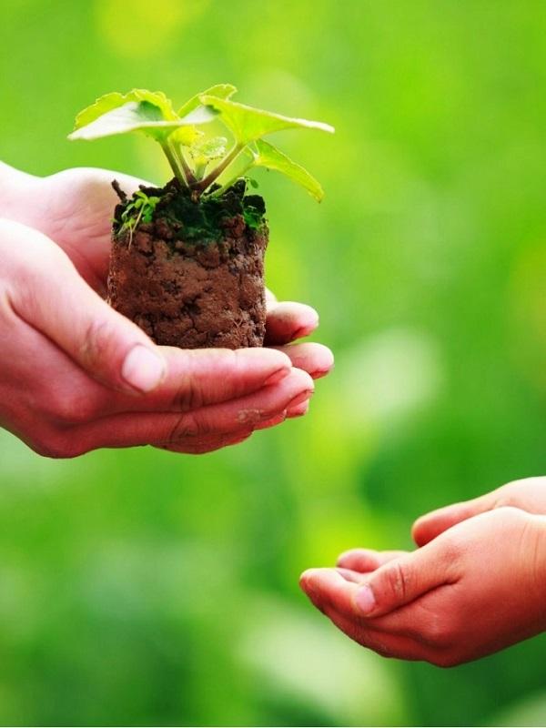 Sanofi con el medio ambiente