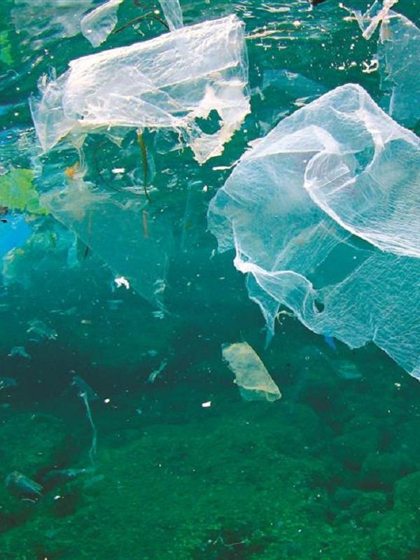Los seis mandamientos que España debería respetar para acabar con la contaminación por plásticos