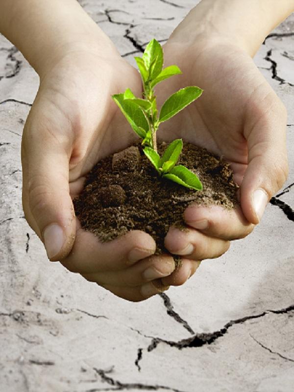Galicia. Centro de Valadares: cuando el compromiso social se une a la protección ambiental