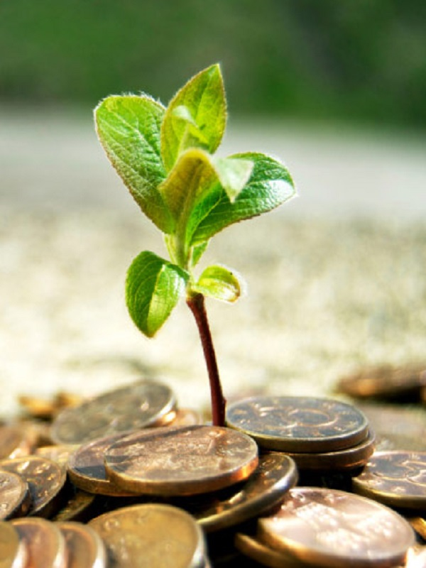 Europa estudia la normativa para los bancos en cuestión de inversiones verdes