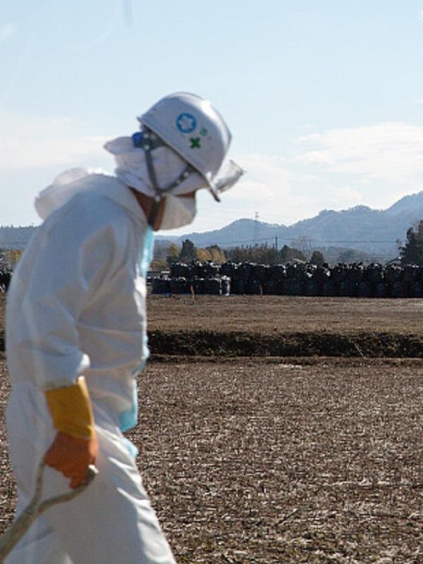 Memoria de pez, ¿qué fue de Fukushima?