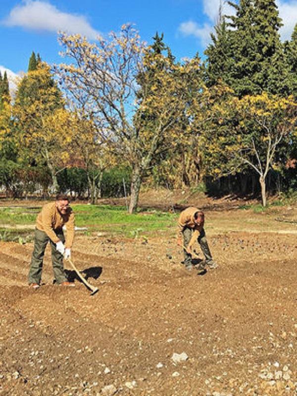 Granada saca pecho con su producción ecológica