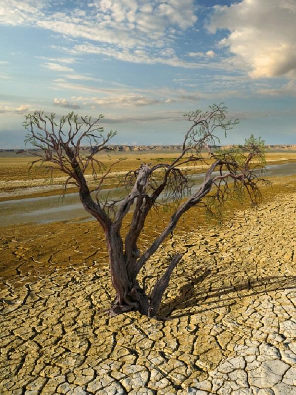 Las lecciones qué podemos extraer de cómo afronta el cambio climático la Región de Murcia
