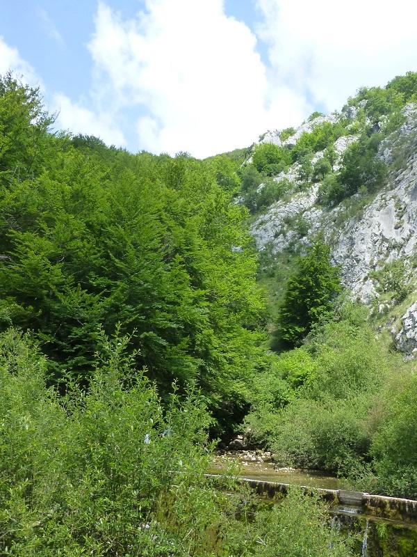 Nuevas plazas para la vigilancia de espacios naturales en Baleares