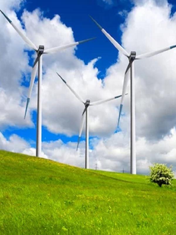 Alianza para el coche eléctrico y la energía eólica en España