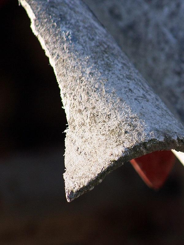 La Asociación de Vecinos el Tajo en pie de guerra contra el amianto