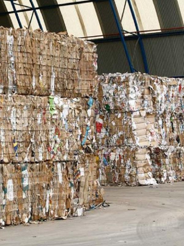 Sobresaliente para León en su gestión de la recogida selectiva de papel y cartón