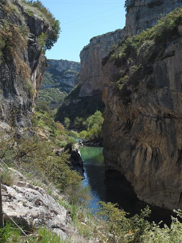 Andalucía y Alemania comparten ideas sobre gestión de espacios protegidos