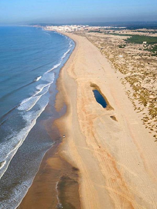 Ecologistas evaluarán cientos de kilómetros del litoral andaluz