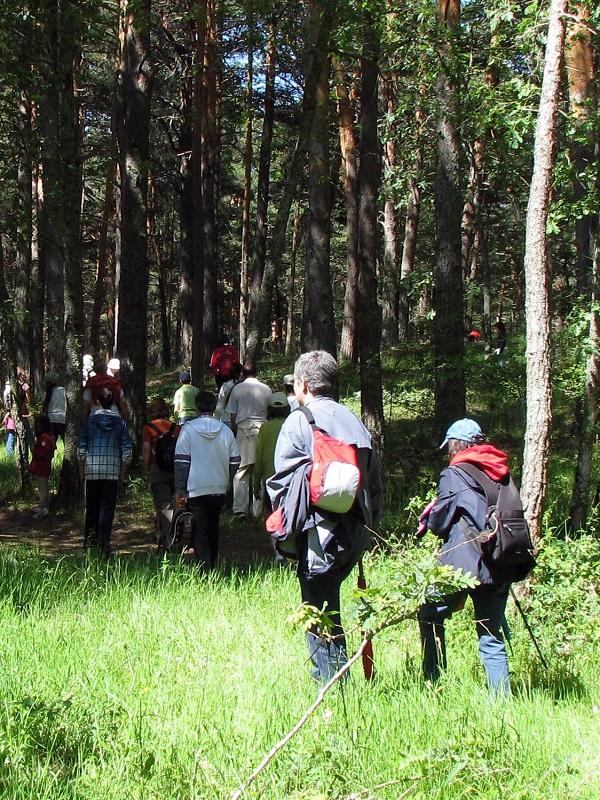 Valsaín (Segovia) programa excursiones ecoturisticas
