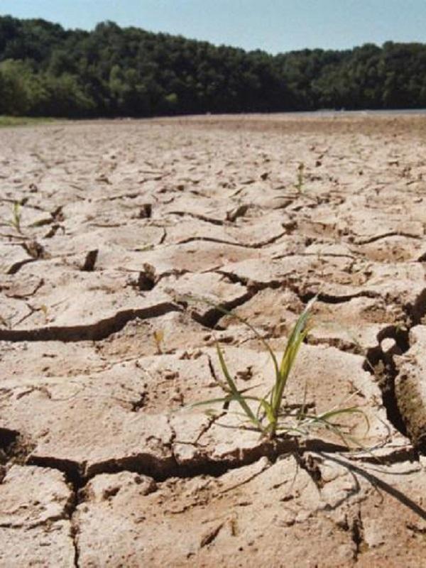 El Cambio Climático desplazará a millones de personas