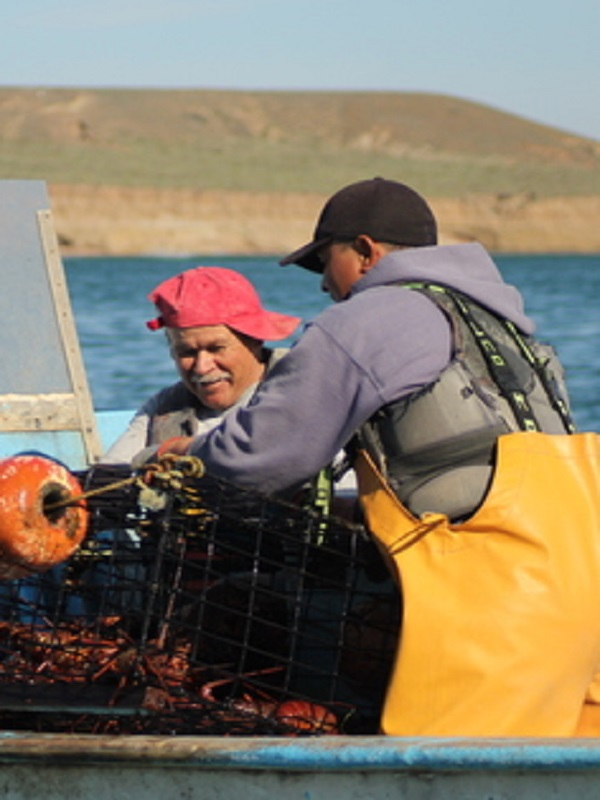 MAREA, una aplicación web para evaluar reservas marinas