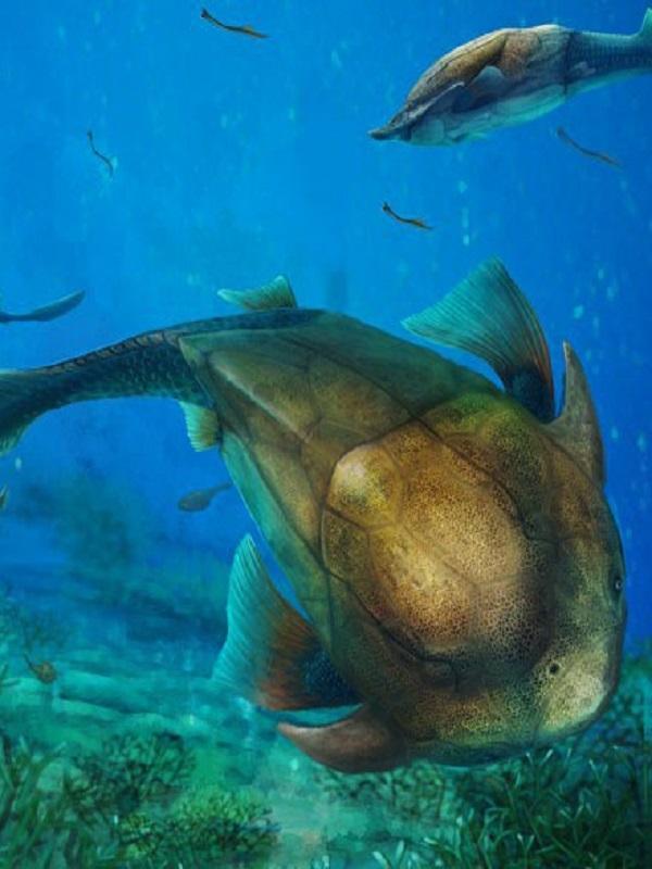 Luz sobre el origen evolutivo de los miembros de los vertebrados