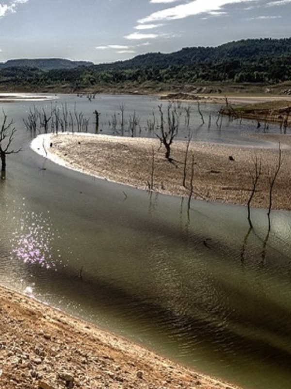 Los infinitos problemas para la humanidad de la escasez de agua