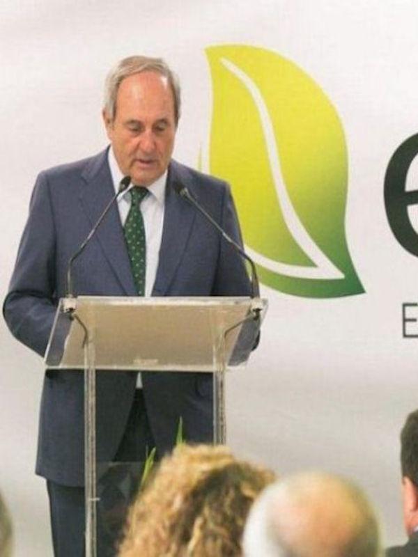 Arregui (Ence) defiende impulsar la biomasa como