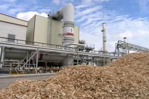 La biomasa aún podría incrementar su producción un 23%