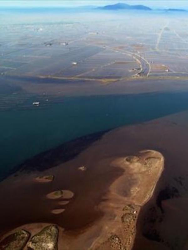 ¿Qué pasa con los sedimentos en la cuenca del Ebro?