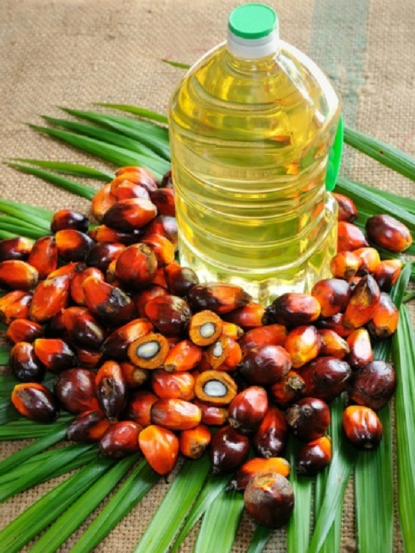 Aceite de palma: Indonesia se ríe a la cara de Europa