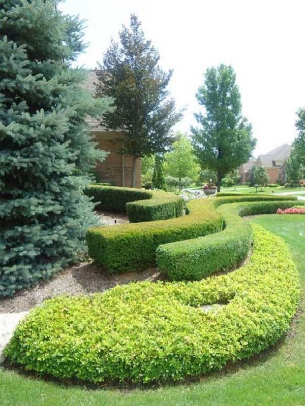 Llegan los jardines verdes a cantabria for Jardineria cantabria