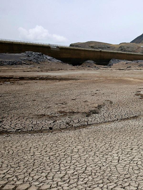 Greenpeace se incorpora a Poletika