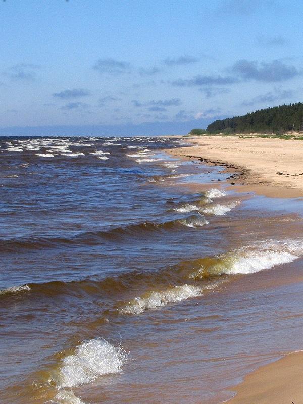 El Mar Báltico, máquina del tiempo oceánica