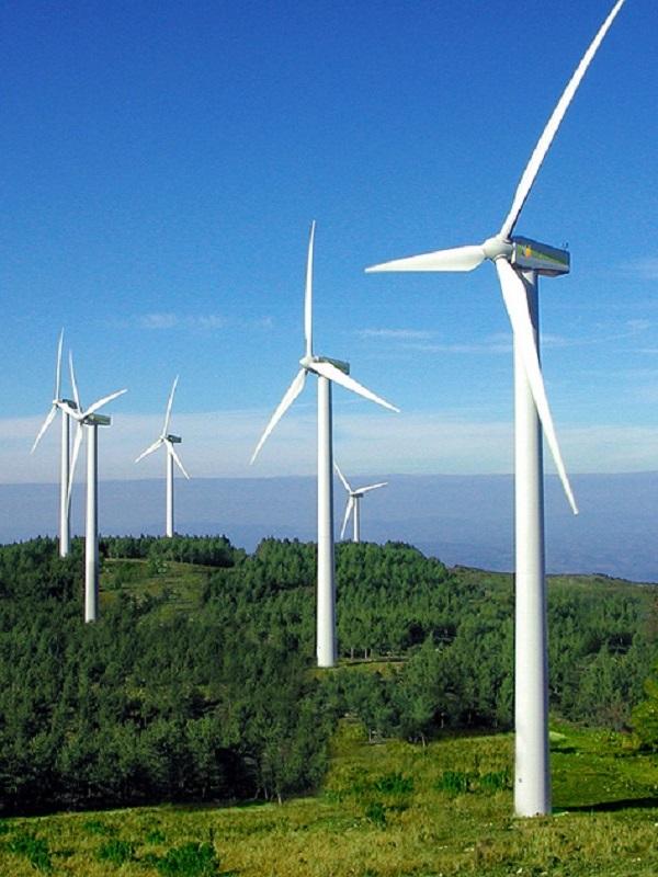 Galardonan al Gobierno Vasco por su apoyo a la industria eólica española