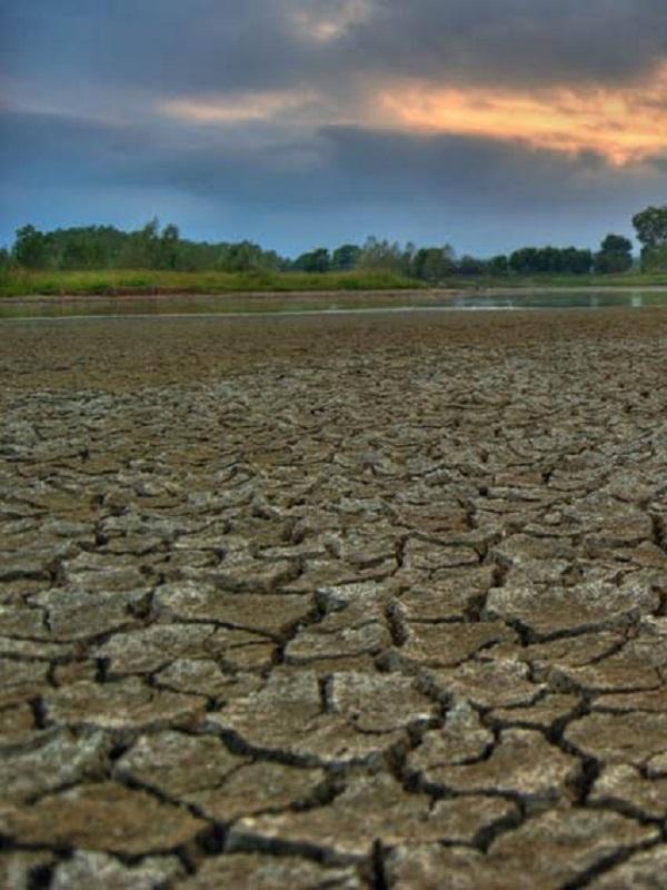 Simposio sobre los retos ambientales, y especialmente los derivados del cambio climático