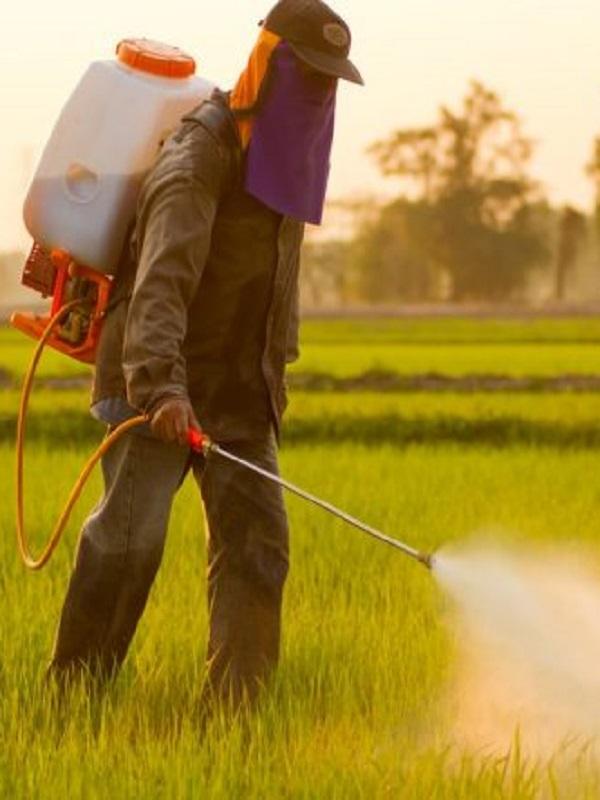 Pesticidas que arruinan los humedales