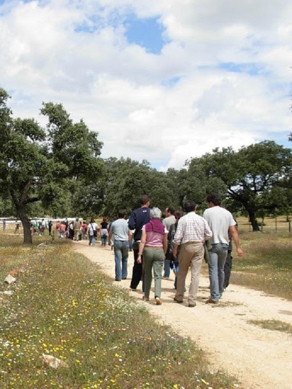 La Ley del PSOE-A sobre caminos públicos rurales avanza con paso firme