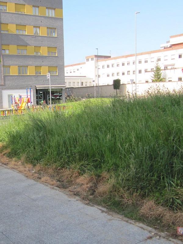 Asturias. El Ayuntamiento de Siero fumiga sin control con herbicida a los vecinos