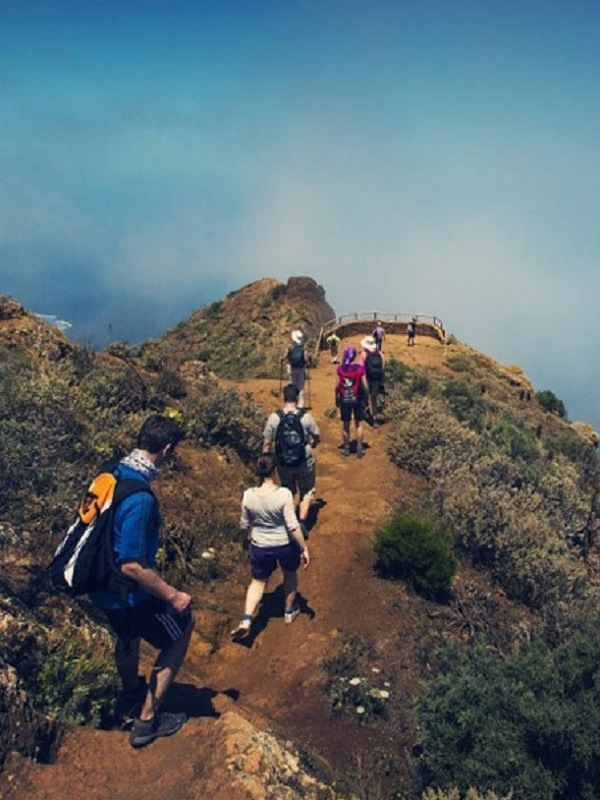 Tenerife Walking Festival contará con 200 senderistas de 14 nacionalidades