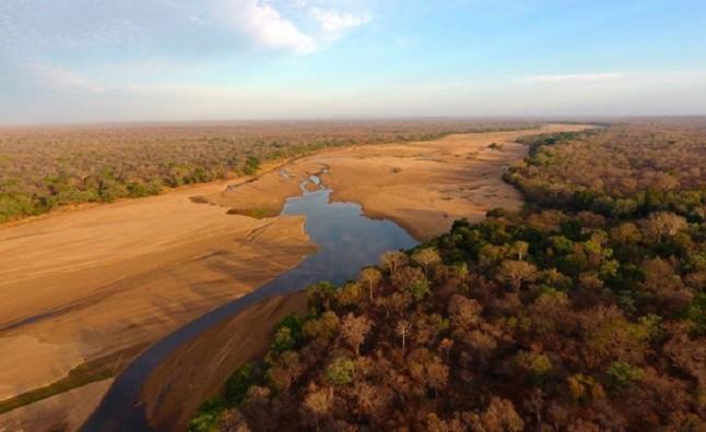 Las áreas protegidas del planeta esquilmadas por el ser humano
