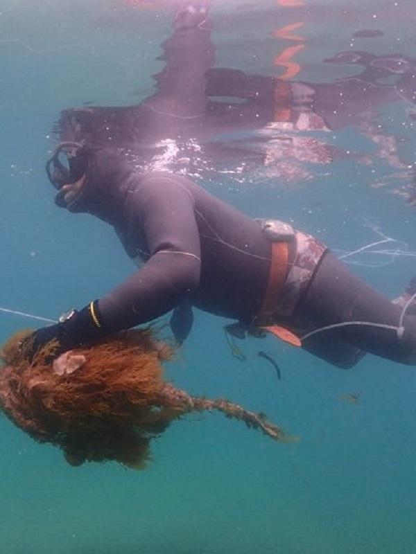 Casi 60 personas acuden a la Playa de Palma para limpiar los fondos marinos y consiguen retirar 650 kilos de basura