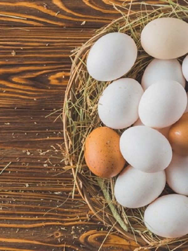 ¿Es saludable comer cada día huevos?