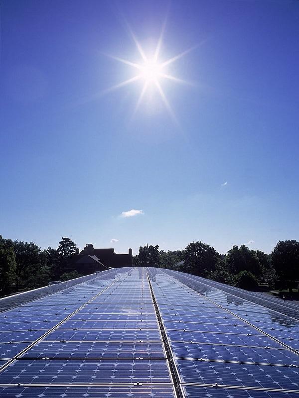 Podrían mejorar las primas a los pequeños productores de energía renovable
