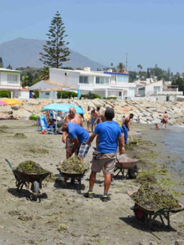 Este sábado retirarán basura del arenal de la playa malagueña de las Acacias