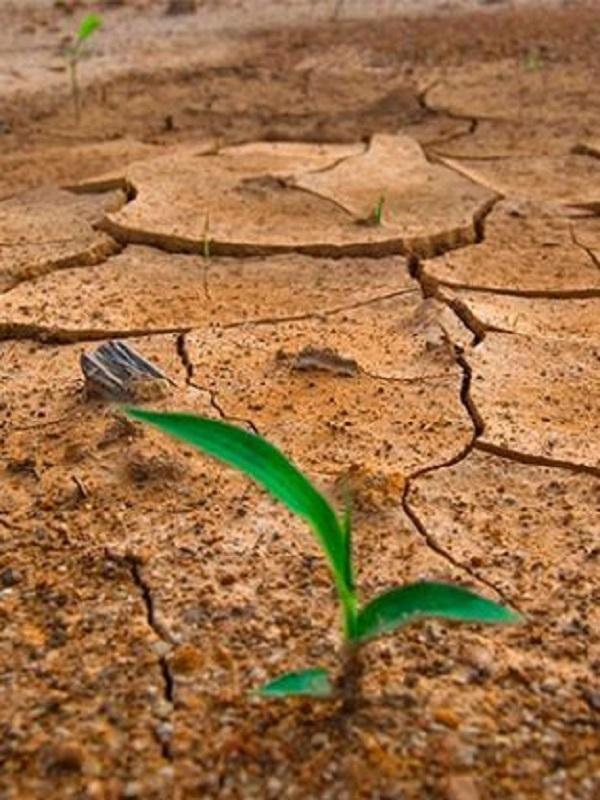 ¿Donde está la Ley de Cambio Climático que prometió el Gobierno para 2018?
