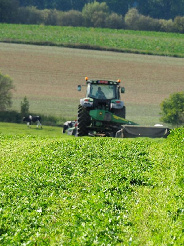 Abonado un pago adicional de 6,7 millones a la agricultura ecológica andaluza
