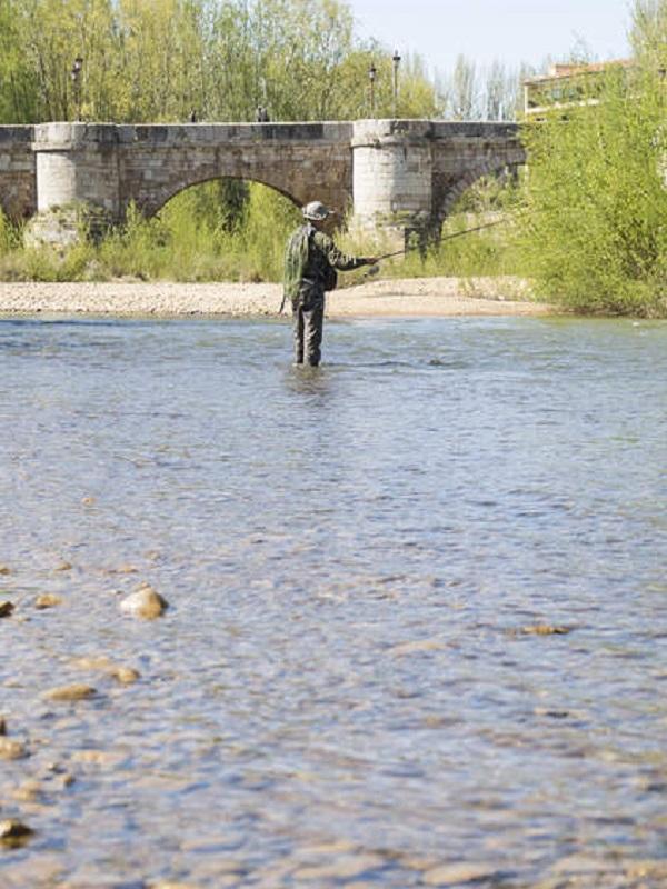 León estrena, en el río Bernesga, el primer coto de Pesca Sin Muerte urbano en Castilla y León