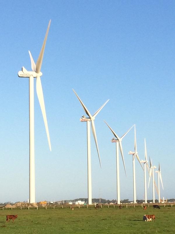 Grenergy cierra con KfW IPEX-Bank un acuerdo para la financiación de un parque eólico en Argentina