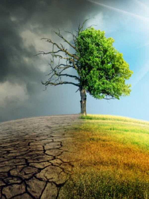 Catalunya quiere romper el abismo entre ciencia y conciencia sobre el cambio climático