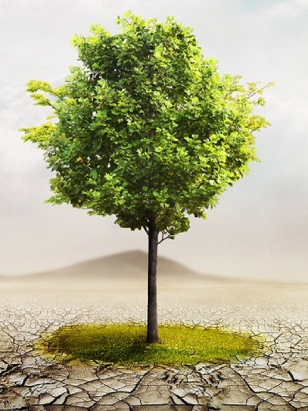 Inminente presentación de la Ley de Cambio Climático