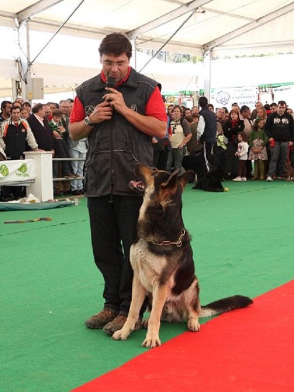 Feria del Perro de este fin de semana en Archidona (Málaga)