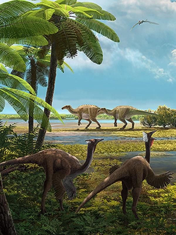 El análisis de fósiles de hadrosaurios en Cataluña revela la edad de su muerte