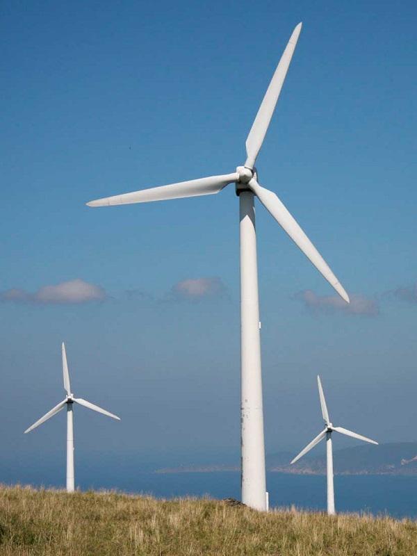 El 43% de los hogares canarios podrían alimentarse de energía eólica tras aumentar un 137% en tres años