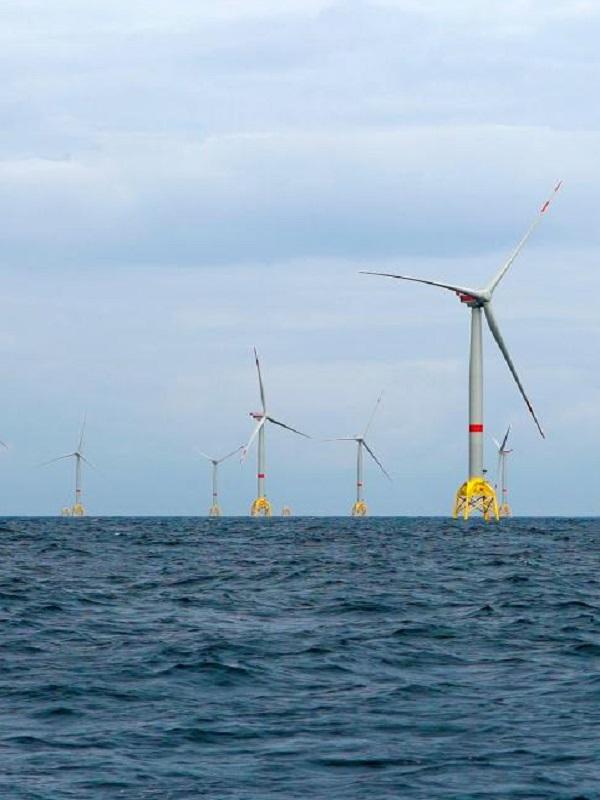 El director general de Energía de la Comisión Europea apuesta por las energías renovables