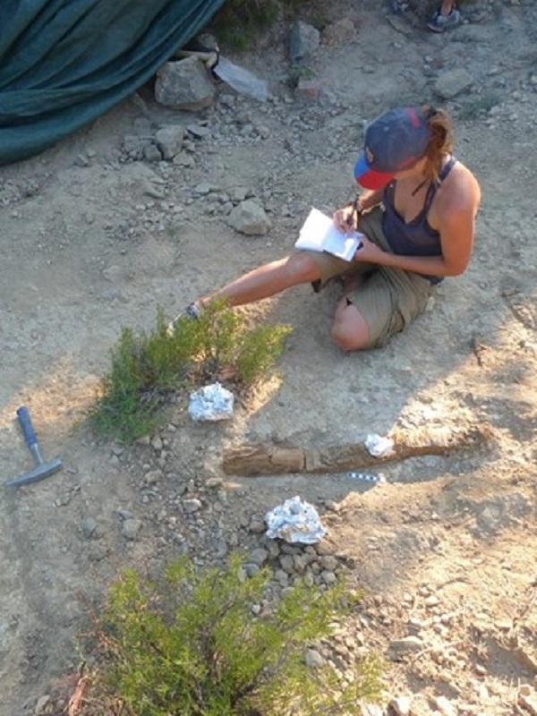 Se publica el estudio más completo del yacimiento de hadrosaurios más importante de Europa