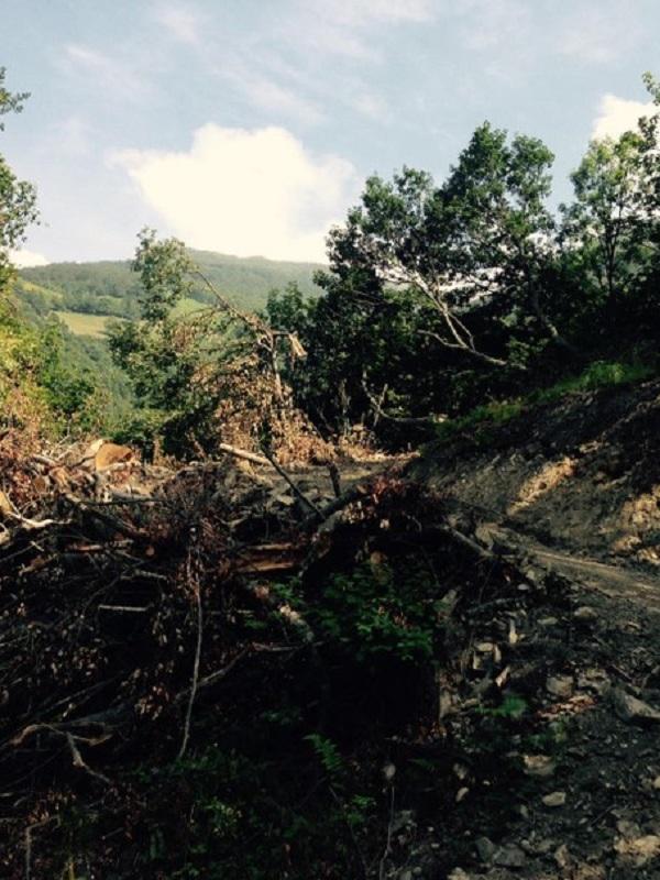 Asturias. Las obras de la pista de Piedrafita son ilegales: No obtuvieron previa licencia urbanística y no se elaboró, ni tramitó la preceptiva evaluación ambiental