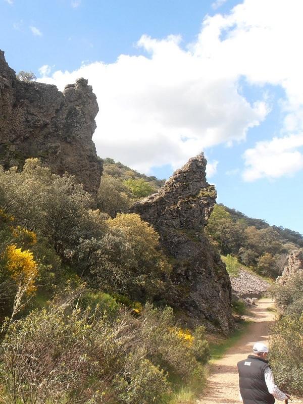 Ecologistas denuncia que se ha cortado una de las rutas más visitadas de Cabañeros por una cacería